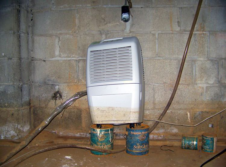 Crawl space dehumidifier for british columbia home for Making a crawl space into a full basement